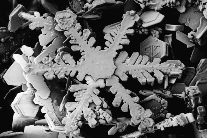 800px-Snowflake_magnified_usda.jpg
