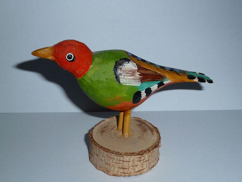 scp_bird.JPG