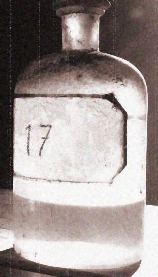 Absinthe8(1).jpg